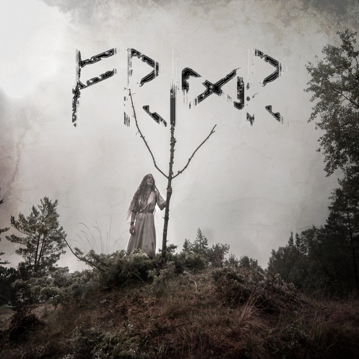 Fridr – Danheim